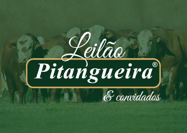 Leilão Pitangueira 2018